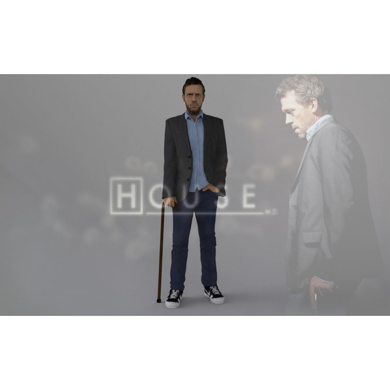 MD Gregory House - STL 3D print files
