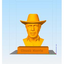 Chuck Norris bust - STL 3D print files