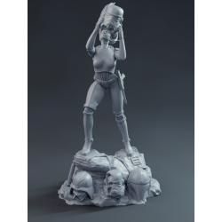 Lady Stormtrooper Sexy - STL 3D print files