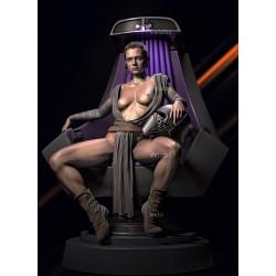 Rey Skywalker NSFW - STL 3D print files